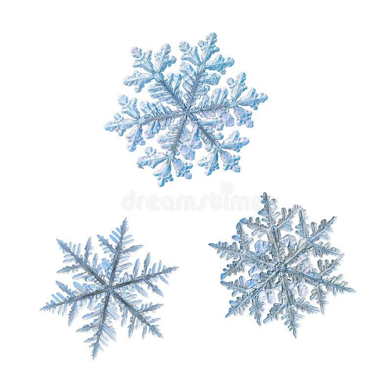 Τρία snowflakes που απομονώνονται στο άσπρο υπόβαθρο στοκ φωτογραφία με δικαίωμα ελεύθερης χρήσης