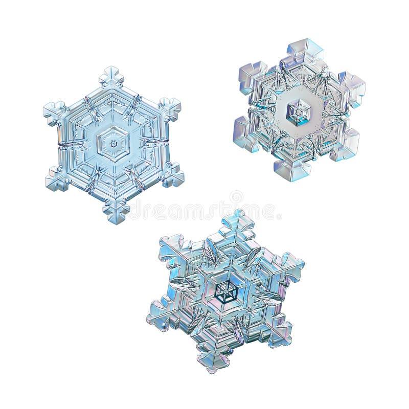 Τρία snowflakes που απομονώνονται στο άσπρο υπόβαθρο στοκ φωτογραφία