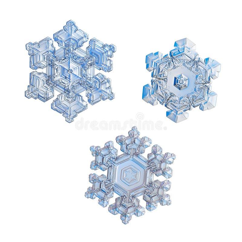 Τρία snowflakes που απομονώνονται στο άσπρο υπόβαθρο στοκ εικόνες με δικαίωμα ελεύθερης χρήσης