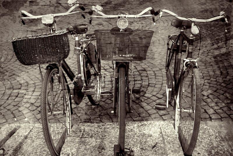 τρίο της Ιταλίας ποδηλάτω& στοκ εικόνες