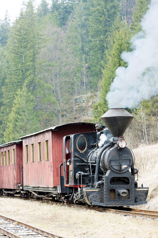τραίνο ατμού της Σλοβακίας στοκ εικόνες με δικαίωμα ελεύθερης χρήσης
