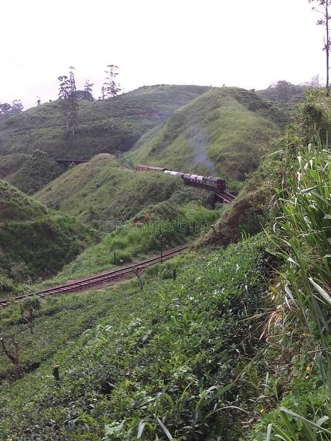 Τραίνο Σρι Λάνκα στοκ φωτογραφία με δικαίωμα ελεύθερης χρήσης