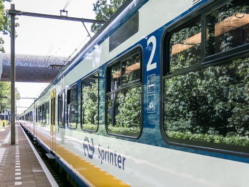 Τραίνο στο σταθμό σιδηροδρόμου, Κάτω Χώρες στοκ φωτογραφία με δικαίωμα ελεύθερης χρήσης