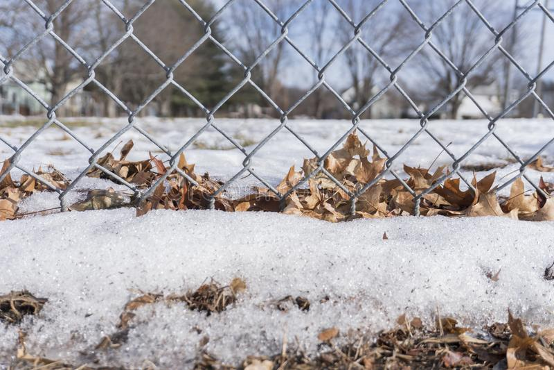 Τραγανά φύλλα και χιόνι που κολλιούνται σε έναν φράκτη στοκ φωτογραφίες