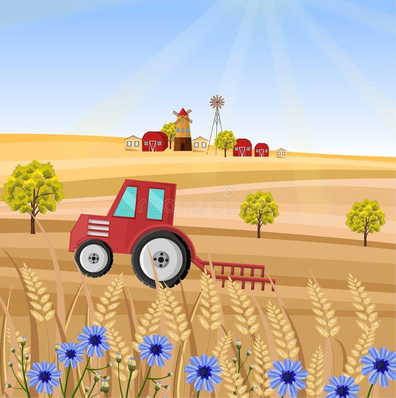 Τρακτέρ στην αγροτική διανυσματική απεικόνιση Μίσχος τομέων σίτου Υπόβαθρα συγκομιδών της Προβηγκίας απεικόνιση αποθεμάτων