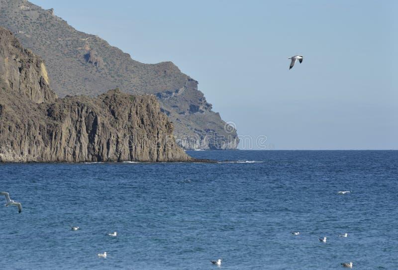 Τραχιά ακτή σε Cabo de Gata στοκ φωτογραφία με δικαίωμα ελεύθερης χρήσης