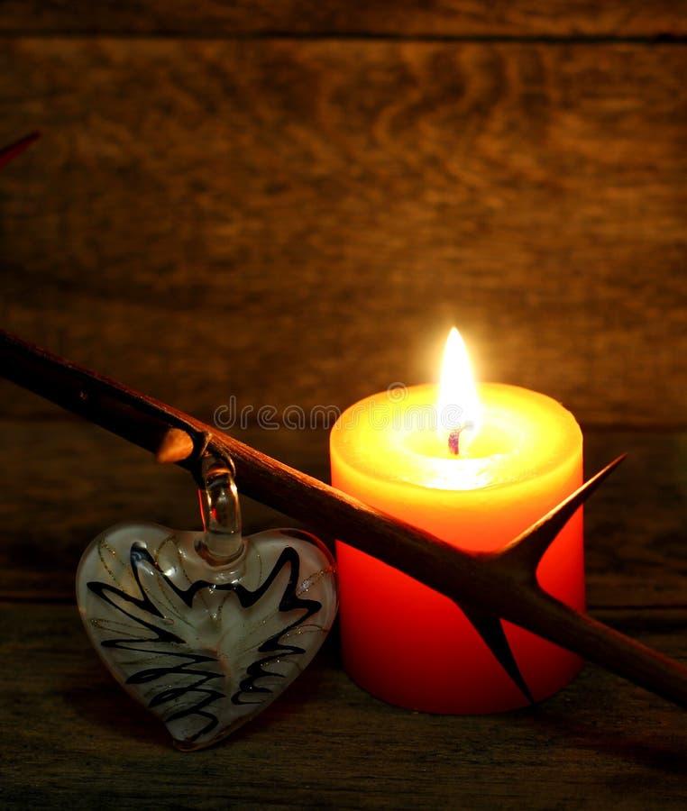 Τραχύς κλάδος και καίγοντας κερί στοκ εικόνες