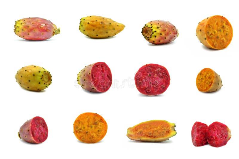 Τραχύ αχλάδι στοκ εικόνες