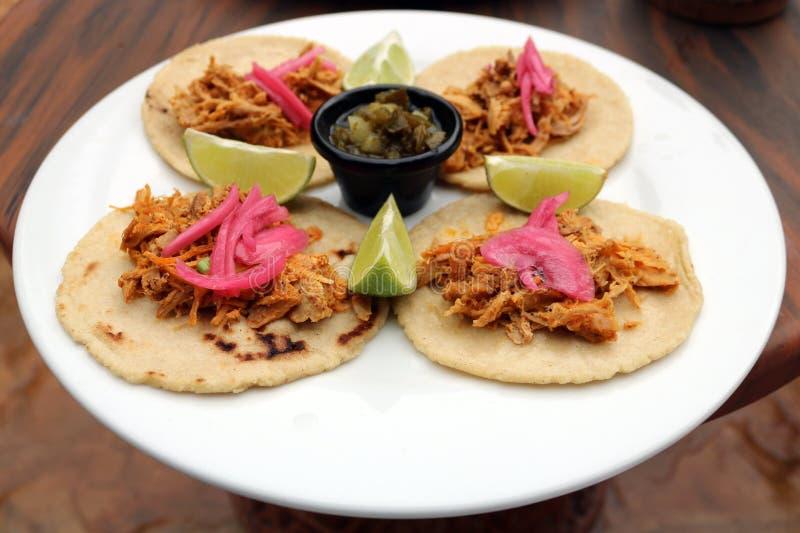 Τργμένα μεξικάνικα τρόφιμα tacos χοιρινού κρέατος λατινοαμερικάνικα στοκ εικόνες με δικαίωμα ελεύθερης χρήσης