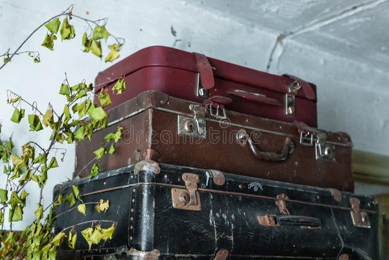 Τρεις βαλίτσες στην ντουλάπα στοκ εικόνες