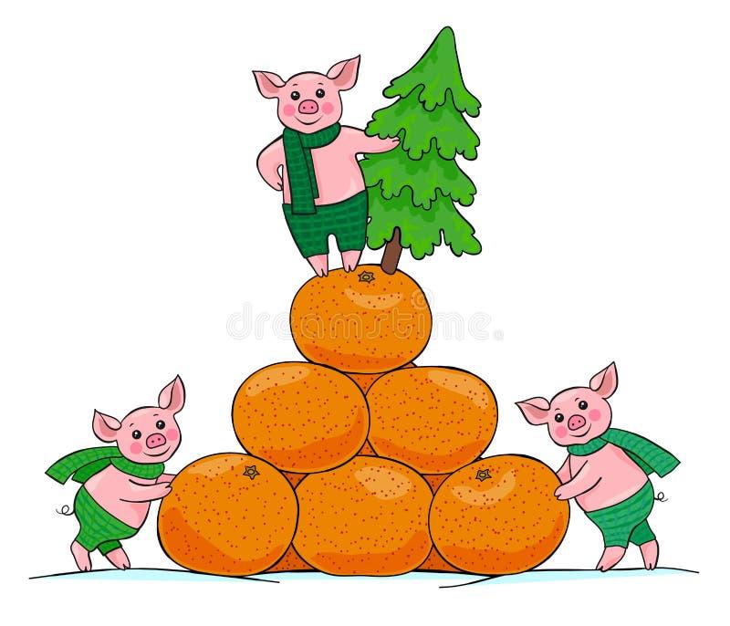 Τρεις ευτυχείς μικροί χοίροι με ένα χριστουγεννιάτικο δέντρο και ένα βουνό tangerines απεικόνιση αποθεμάτων