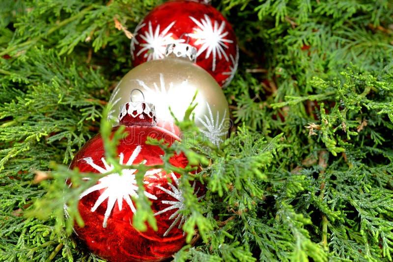 Τρεις ζωηρόχρωμες διακοσμήσεις Χριστουγέννων στις πράσινες βελόνες πεύκων στοκ φωτογραφία με δικαίωμα ελεύθερης χρήσης