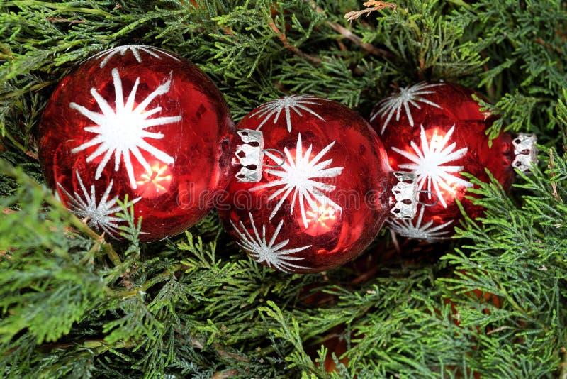 Τρεις κόκκινες σφαίρες Χριστουγέννων στις πράσινες βελόνες πεύκων στοκ φωτογραφία
