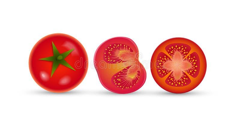 Τρεις λεπτομερείς ώριμες κόκκινες ντομάτες στο άσπρο υπόβαθρο, σύνολο ντοματών, στοκ φωτογραφίες με δικαίωμα ελεύθερης χρήσης