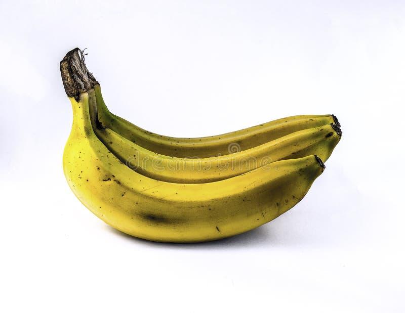 Τρεις μπανάνες στοκ φωτογραφία με δικαίωμα ελεύθερης χρήσης