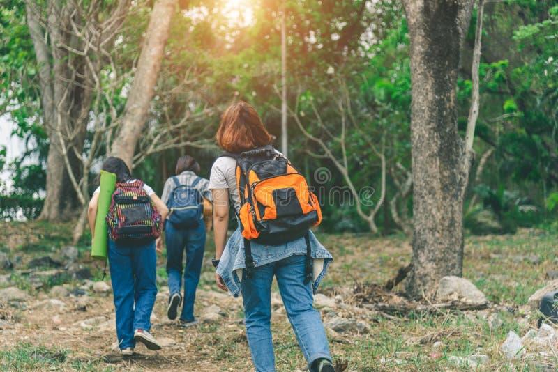 Τρεις νέες κυρίες που περπατούν με τα σακίδια πλάτης μέσω του πράσινου πολύβλαστου λιβαδιού στοκ εικόνες με δικαίωμα ελεύθερης χρήσης