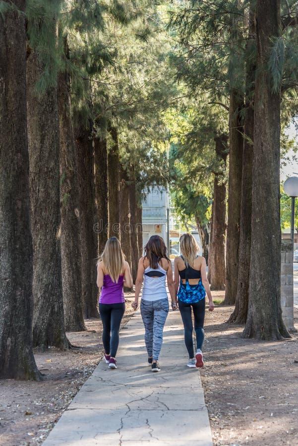 Τρεις νέες κυρίες που περπατούν στο πάρκο στοκ εικόνες