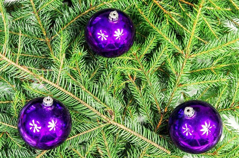 Τρεις πορφυρές σφαίρες Χριστουγέννων στοκ φωτογραφία