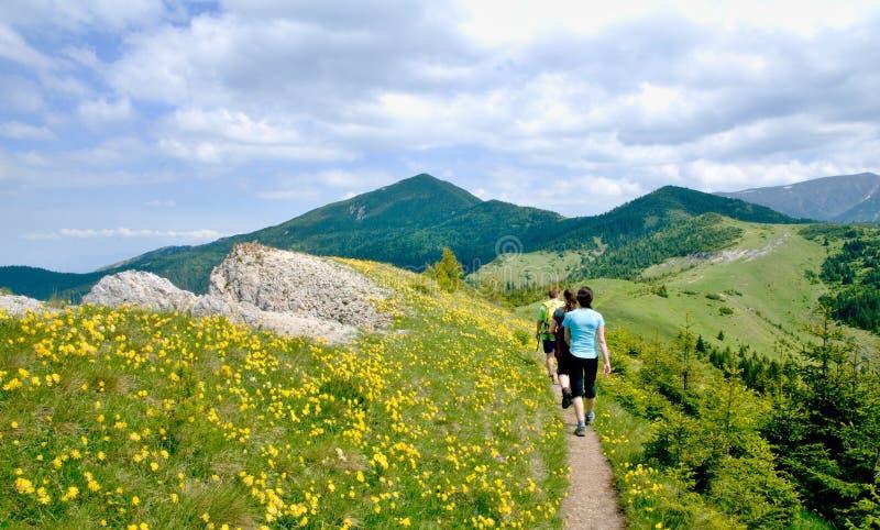 Τρεις τουρίστες στα σλοβάκικα βουνά στοκ φωτογραφίες