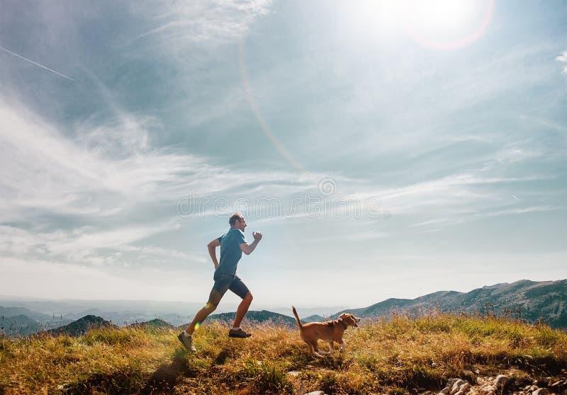 Τρεξίματα ατόμων με το σκυλί λαγωνικών του στην κορυφή βουνών στοκ εικόνες