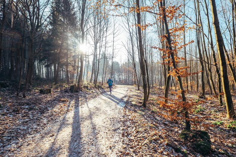 Τρεξίματα γυναικών στο πάρκο - πρόσφατο φθινόπωρο, πρώτο χιόνι στοκ εικόνες