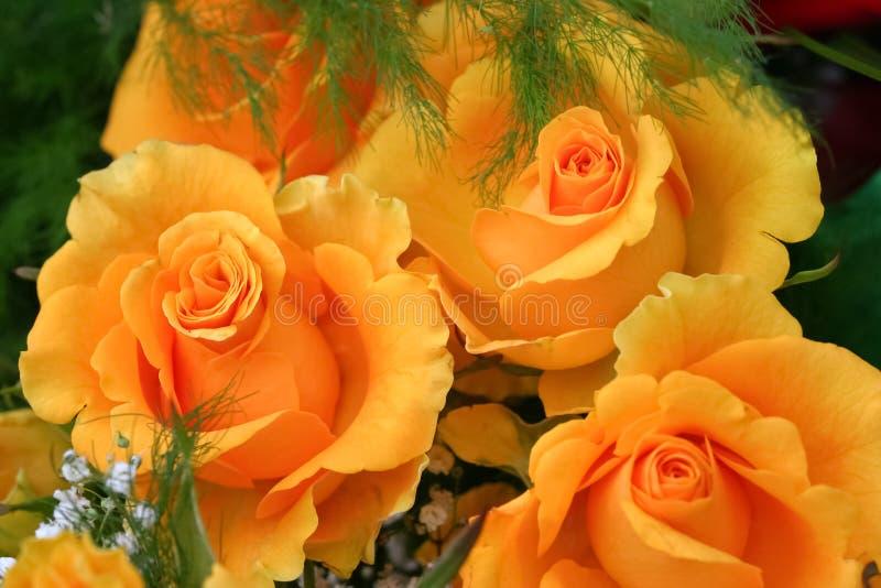 τριαντάφυλλα ανθοδεσμών κίτρινα στοκ εικόνες με δικαίωμα ελεύθερης χρήσης