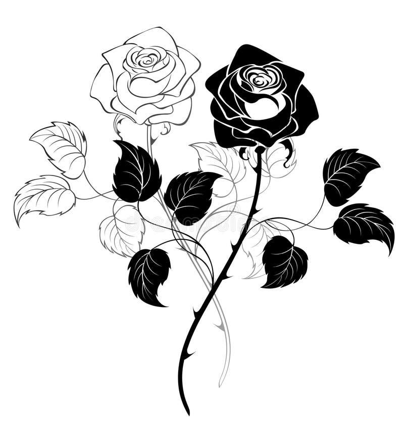 τριαντάφυλλα δύο διανυσματική απεικόνιση