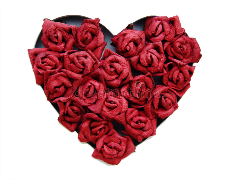 τριαντάφυλλα καρδιών στοκ φωτογραφίες