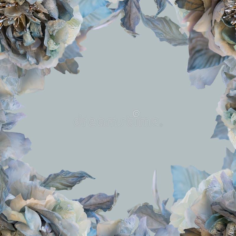 Τριαντάφυλλα λουλουδιών σε ένα υπόβαθρο χρώματος Ευχετήρια κάρτα των τριαντάφυλλων μεταξιού διανυσματική απεικόνιση