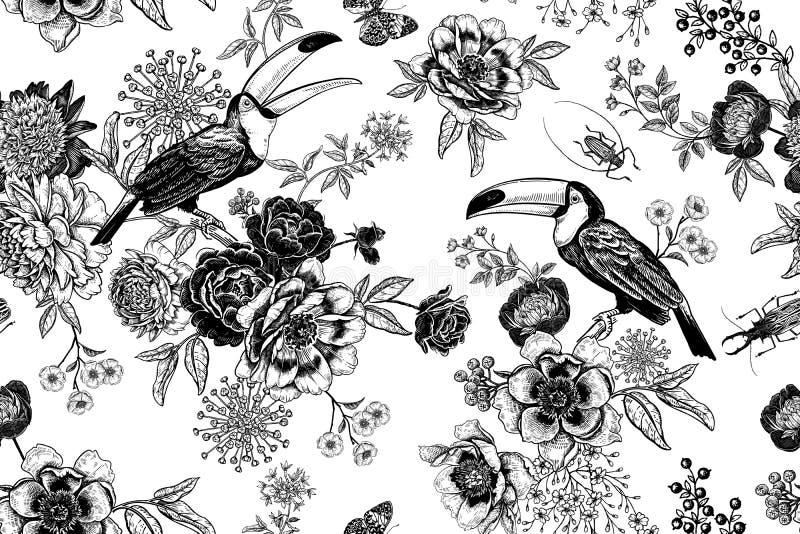 Τριαντάφυλλα, πετεινές και δερμάτινες Μοτίβο χωρίς άνθη απεικόνιση αποθεμάτων