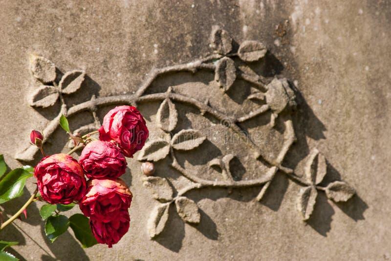 Τριαντάφυλλα και ψαμμίτης στοκ φωτογραφία με δικαίωμα ελεύθερης χρήσης
