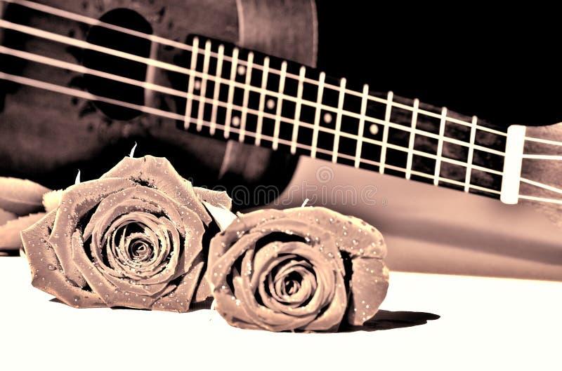 Τριαντάφυλλα και ukulele Τόνος αμπέλων στοκ εικόνα με δικαίωμα ελεύθερης χρήσης