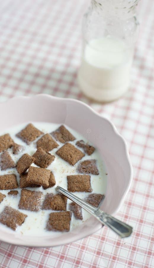 Τριζάτα μαξιλάρια δημητριακών και σοκολάτας με το γάλα στοκ φωτογραφία με δικαίωμα ελεύθερης χρήσης