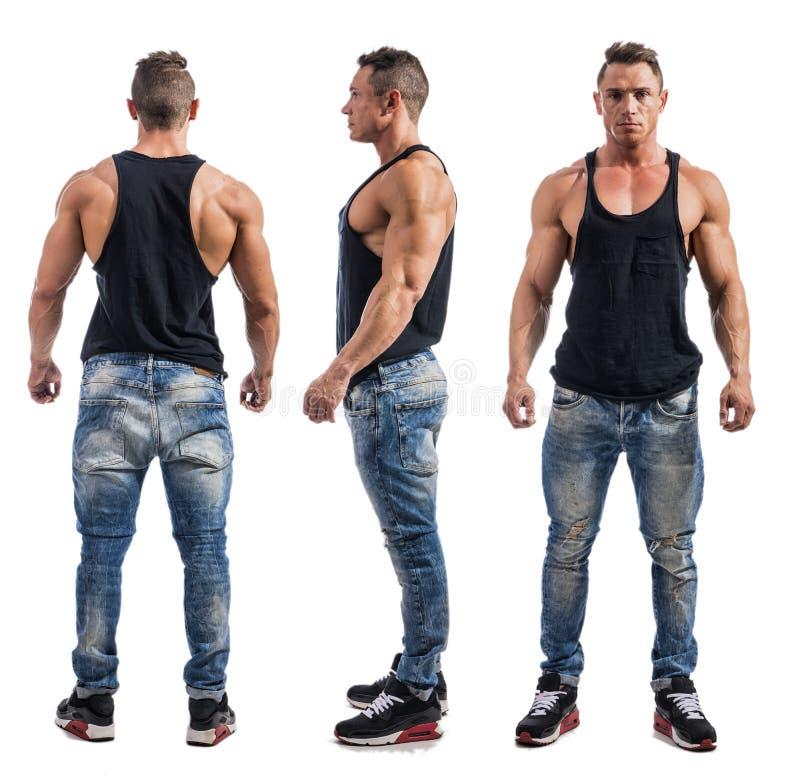 Τριπλή άποψη του bodybuilder: πλάτη, μέτωπο, πλευρά στοκ φωτογραφίες