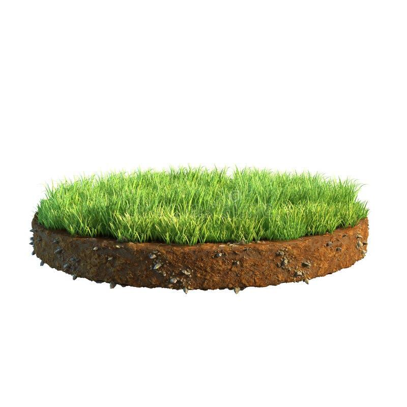 τρισδιάστατη απεικόνιση της διατομής του εδάφους με τη χλόη που απομονώνεται στο λευκό στοκ εικόνες με δικαίωμα ελεύθερης χρήσης