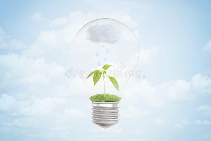 τρισδιάστατη απόδοση ενός βροχερού σύννεφου πέρα από έναν πράσινο νεαρό βλαστό μέσα σε μια λάμπα φωτός στο μπλε υπόβαθρο απεικόνιση αποθεμάτων