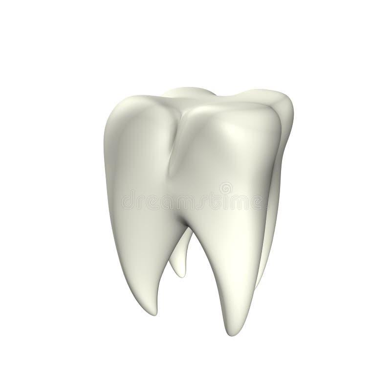 τρισδιάστατο δόντι διανυσματική απεικόνιση