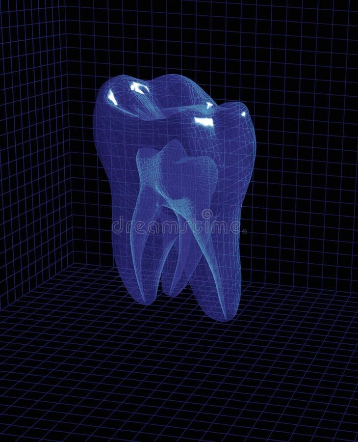 τρισδιάστατο δόντι στοκ εικόνες