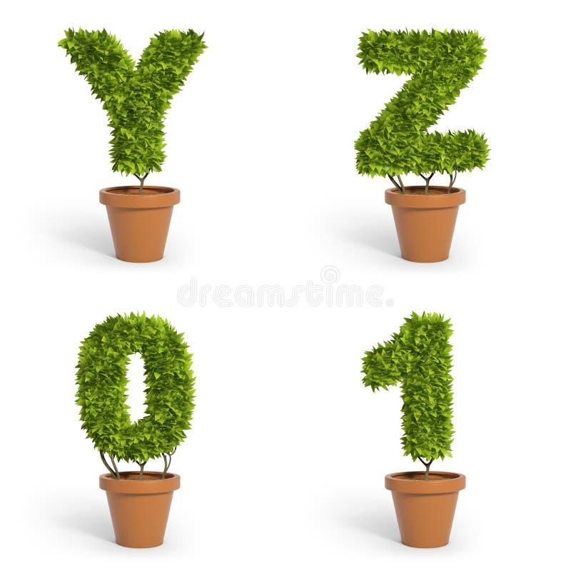 τρισδιάστατα φυτά γλαστρών πηγών διανυσματική απεικόνιση