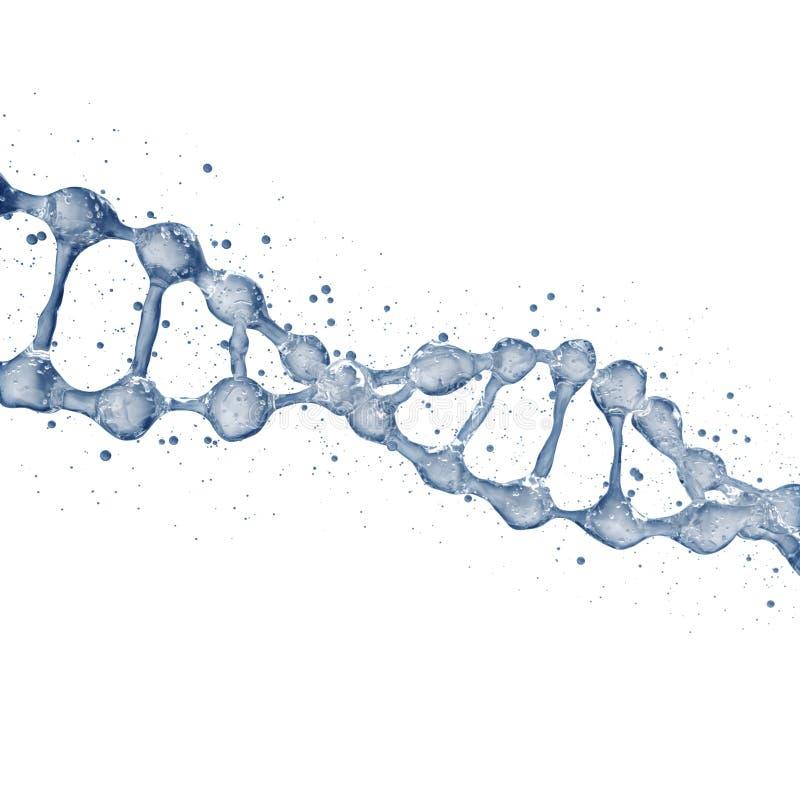 τρισδιάστατη απεικόνιση του προτύπου μορίων DNA από το νερό στοκ εικόνες