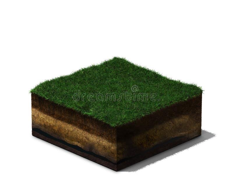 τρισδιάστατο τμήμα του εδάφους με τη χλόη και το χώμα ελεύθερη απεικόνιση δικαιώματος