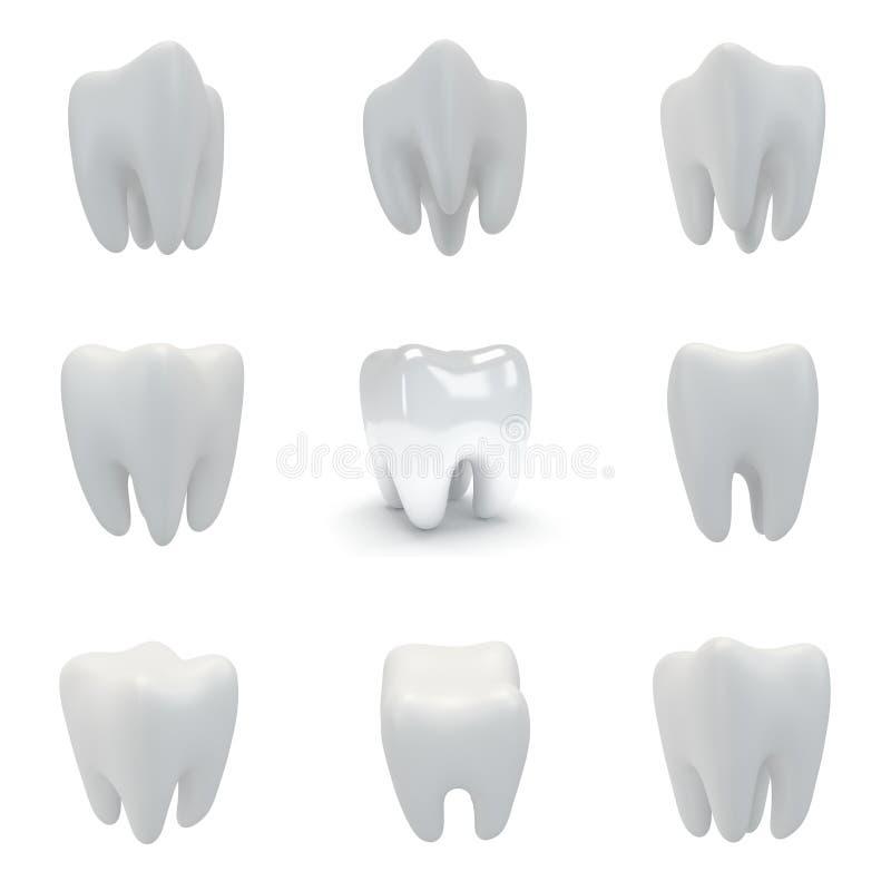 τρισδιάστατο δόντι που τίθεται στο άσπρο υπόβαθρο διανυσματική απεικόνιση