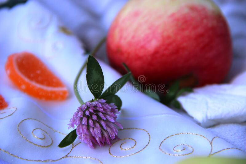 Τριφύλλι, κοντινό πορτοκαλί κομμάτι μαρμελάδας πικάντικο στοκ εικόνες