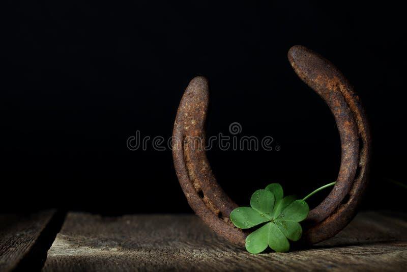 Τριφύλλι και πέταλο στοκ φωτογραφία με δικαίωμα ελεύθερης χρήσης