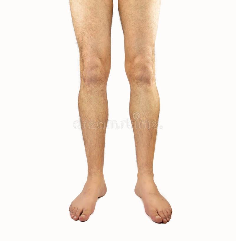 Τριχωτά πόδια ατόμων στοκ εικόνα με δικαίωμα ελεύθερης χρήσης