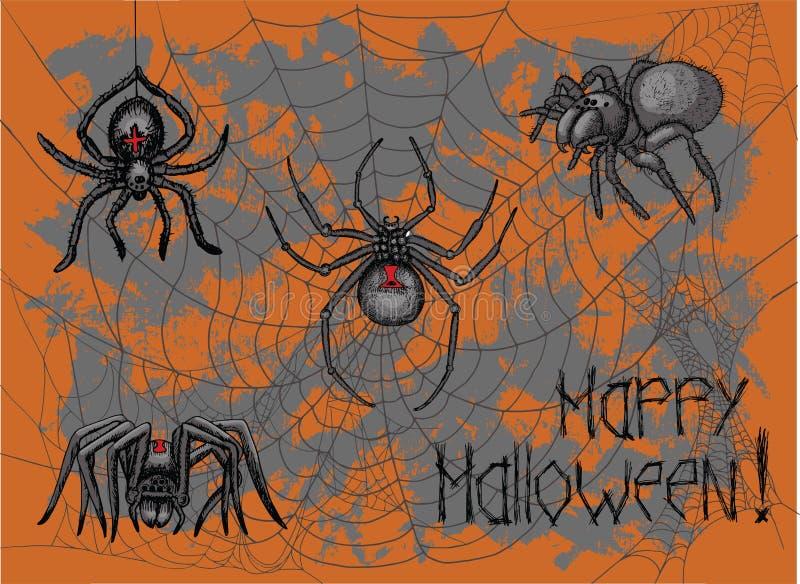 Τρομακτικές αράχνες και ιστός αράχνης ελεύθερη απεικόνιση δικαιώματος