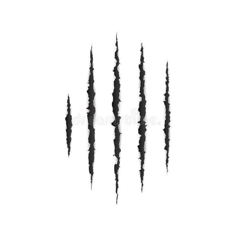 Τρομακτική επιφάνεια εγγράφου leceration Σύσταση γρατσουνιών νυχιών άγριων ζώων έγγραφο ακρών που σχίζεται Το Demage από τα νύχια διανυσματική απεικόνιση