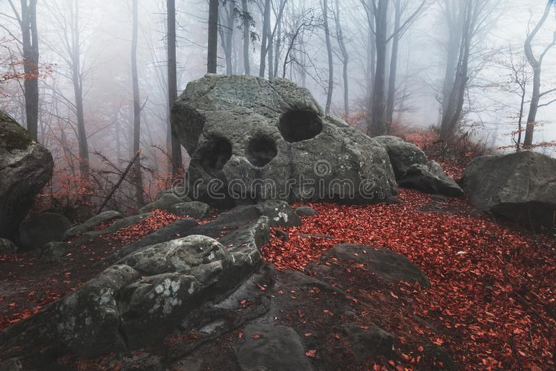 Τρομακτικός βράχος στα απόκοσμα ομιχλώδη δασικά κόκκινα φύλλα στην ημέρα φθινοπώρου στοκ εικόνα