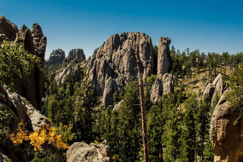 Τρομερό τοπίο βουνών στο εθνικό δρυμός Blackhills, νότια Ντακότα, ΗΠΑ στοκ φωτογραφία