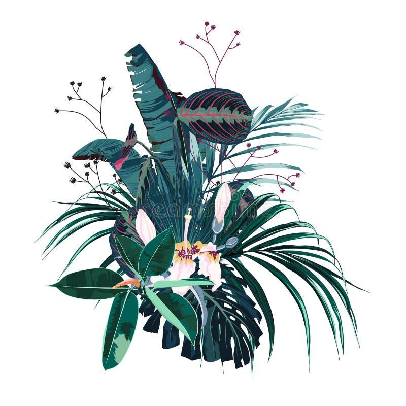 Τροπικά λουλούδια, φύλλα φοινικών, φύλλο ζουγκλών, εξωτικό ρόδινο λουλούδι απεικόνιση αποθεμάτων